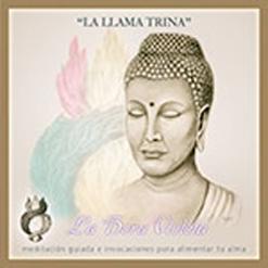 lallama_trina